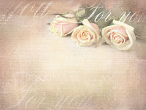 Romantic retro grunge background with roses. Sweet roses in vintage color style with free space for text Stock Image