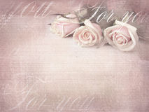Romantic retro grunge background with roses. Sweet roses in vintage color style with free space for text Royalty Free Stock Images