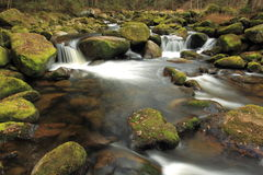 Romantic river Vydra in Bohemian Forest Stock Photos