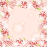 Romantic rose background Royalty Free Stock Photo