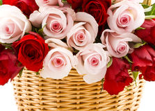 Romantic roses Royalty Free Stock Images