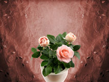 Romantic roses Royalty Free Stock Photo