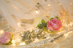 Romantic roses and feather Stock Photography