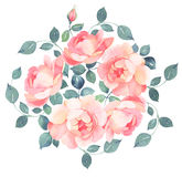 Romantic roses watercolor bouquet Royalty Free Stock Photo