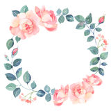 Romantic roses watercolor wreath Royalty Free Stock Photo
