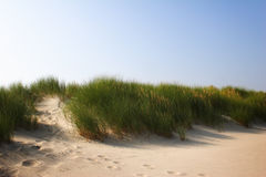 Romantic Sand Dunes at Sunrise Stock Photo