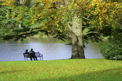 Romantic scene. A couple sitting on a park bench Royalty Free Stock Image