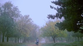 Romantic scene of couples foggy day on the road. The general outline of the autumn landscape. The guy and the girl walk on the nature. Ukraine stock video