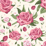 Romantic seamless floral pattern Stock Images