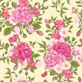 Romantic seamless pattern with pink roses on a light background. Stock Photography