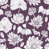 Romantic seamless pattern with tender blooming lotus hand drawn with contour lines on purple background. Backdrop with Royalty Free Illustration