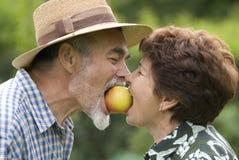 Romantic senior couple. Happy elderly couple embracing outdoors Stock Photos