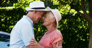 Romantic senior couple looking at each other in park. On a sunny day stock video footage