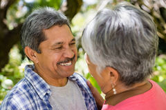 Romantic senior couple looking face to face in garden. On a sunny day Stock Photos