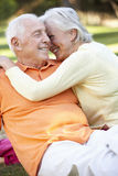 Romantic Senior Couple In Park Royalty Free Stock Images