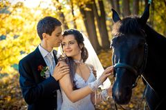 Romantic sensual portrait of the stylish groom tenderly hugging his charming gorgeous bride during their walk with horse. In the autumn park Royalty Free Stock Photo