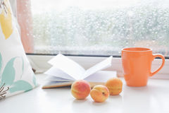 Romantic set for cozy read on a rainy summer day Royalty Free Stock Photography