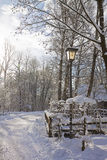 Romantic snow path in the wood Stock Image