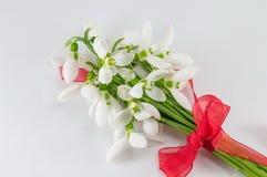 Romantic snowdrops bouquet Stock Photography