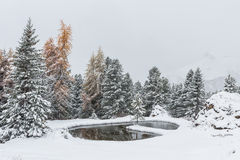 Romantic snowy lake. Romantic lake with snowy Christmas atmosphere in the Dolomites Royalty Free Stock Photos