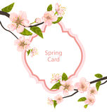 Romantic Spring Card with Blossoming Tree Branches Royalty Free Stock Image