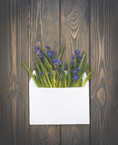 Romantic spring invitation card. White envelope and wildflowers. Easter spring card. Congratulatory envelope with a bouquet of wild flowers - blue forest wooded Royalty Free Stock Images