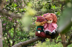Romantic story in citrus orchard. Two rag babies are sitting in the citrus orchard just like lover stock photo