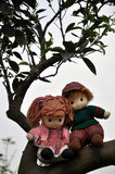 Romantic story in citrus orchard. Two rag babies are sitting in the citrus orchard just like lover stock photography