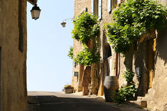 Romantic street with old houses decorated blooming flowers in small village near Geneva Lake, Switzerland Stock Images