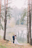 Romantic stroll of newlywed couple on the forest lake sandy shore Stock Image