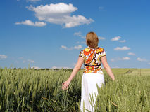 Romantic stroll in wheat corn Stock Images
