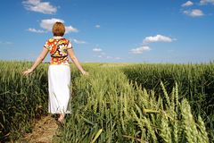 Romantic stroll in wheat corn Stock Photos