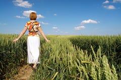 Romantic stroll in wheat corn Stock Photos