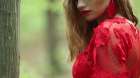 Romantic Stylish Girl In The Forest stock video