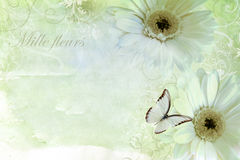 Romantic Summer flowers. With swirls Stock Photography