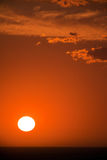 Romantic sunset. With clouds - vertical format Royalty Free Stock Photos