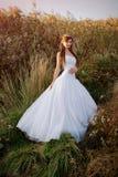 Romantic sunset bridal portrait royalty free stock photography
