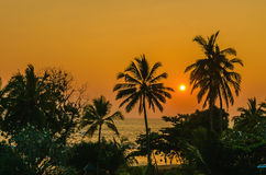 Romantic sunset on Caribbean beach with palms Royalty Free Stock Photography