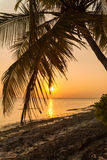 Romantic sunset on a desert island, Maldives Royalty Free Stock Images