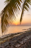 Romantic sunset on a desert island, Maldives Royalty Free Stock Photography