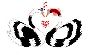 Romantic swan couple vector illustration