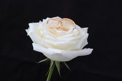 Romantic symbol of love Royalty Free Stock Image