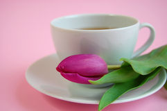 Romantic Tea Time. A cup of tea or coffee with a pink tulip on a plate Royalty Free Stock Photography