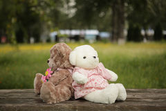Romantic teddy-bears. Two teddy-bears on a board Royalty Free Stock Image