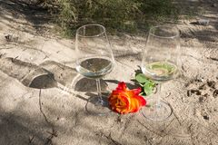 Romantic time with wine and rose flower Royalty Free Stock Photo