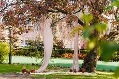 Romantic tree served for couple in elegant style. Romantic place under tree served for two, outdoor in elegant style Stock Image