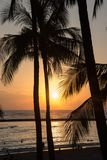Romantic tropical Hawaiian Waikiki beach and palm trees silhouetted at sunset Stock Photo