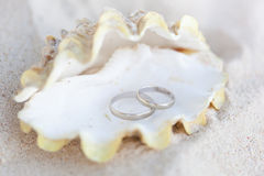 Romantic tropical scene on beach Stock Photography