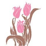 Romantic tulips Royalty Free Stock Image
