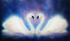 Romantic two swans on cosmic space, and stars. Royalty Free Stock Photos